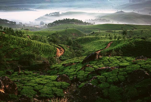 Kerala, Intia, kauppapolitiikka