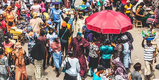 Nigeria, tori